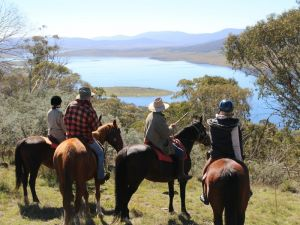Reynella Homestead and Horseback Rides - Accommodation QLD