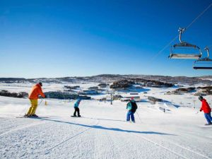 The Coachman Ski Lodge - Accommodation QLD
