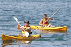 Manly Kayaks - Accommodation QLD