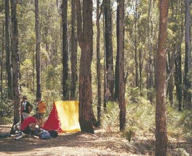 Lane Poole Reserve - Accommodation QLD