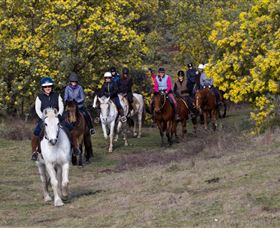 Burnelee Excursions on Horseback - Accommodation QLD