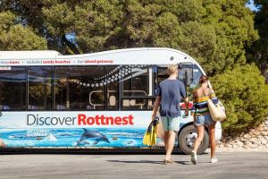 Rottnest Island Tour from Perth or Fremantle including Bus Tour - Accommodation QLD