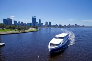 One-way Sightseeing Cruise between Perth and Fremantle - Accommodation QLD