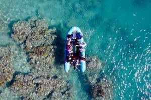 Glass-bottom boat tour with Whitehaven Beach - Accommodation QLD